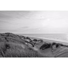 Fotobehang Zonsondergang tussen de Duinen Zwart Wit