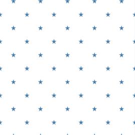 Duro 1900  397-03