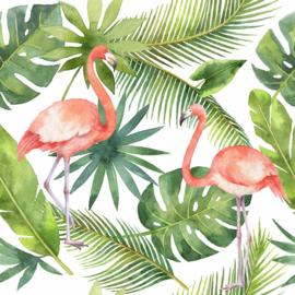 AS Creation Greenery Flamingo DD116612 fotowand