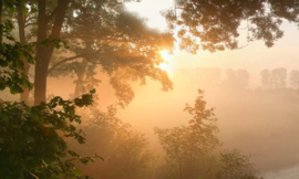Fotobehang Holland 4646 - Doorwerth ochtendlicht