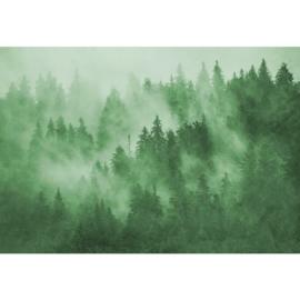 Fotobehang Boomtoppen in de Nevel Groen