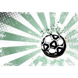 Fotobehang Football Stars I