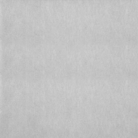 Dutch Wallcoverings Chroma 01-Silver