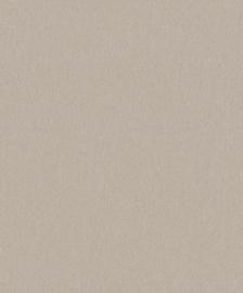 BN Zen 220262 Canvas