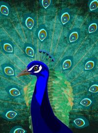 Fotowand Peacock by Sabrina Ziegenhorn afm. 200cm x 270cm hoog