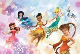 fotobehang Disney Fairies afmeting 416cm x 254cm hoog