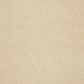 Dutch Wallcoverings Chroma 21-Raffia