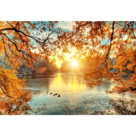 Fotobehang Autumn Sunset