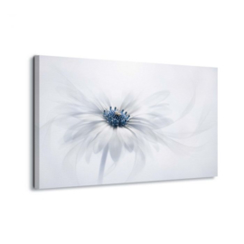 Canvasdoek Witte bloem