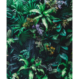 Esta Jungle Fever fotobehang 158900 tropische planten