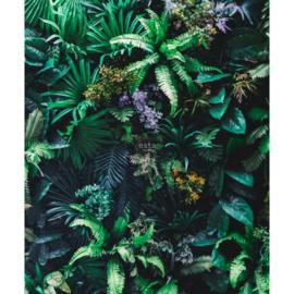 Esta Jungle Fever fotobehang 158900 tropische planten