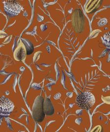 Khrôma Cabinet of Curiosities CAB604 Papaya
