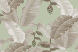 Fotowand Heliconia 2 by Atelier 47 afm. 400cm x 270cm hoog
