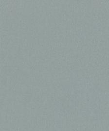 BN Zen 218699 Canvas
