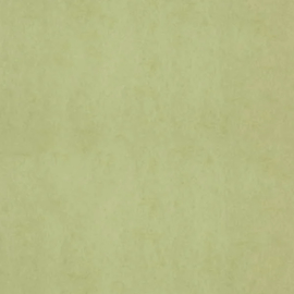 Dutch Wallcoverings Chroma 58-Lime
