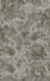 BN Dimensions by Edward van Vliet - 219589