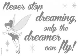 Wandsticker Disney Never Stop Dreaming 14001