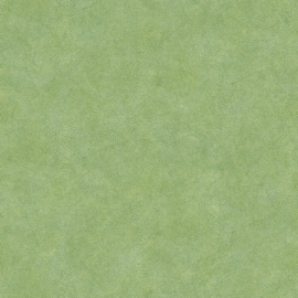 Noordwand Evergreen 7333