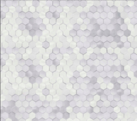 BN Dimensions by Edward van Vliet - 219580