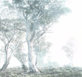 Komar Raw R3-023 Magic Trees