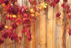 Fotobehang Houten hek met bloemen