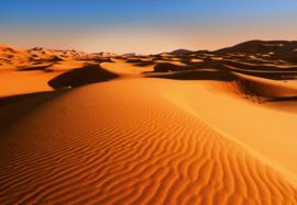 Fotobehang Idealdecor 00976 Woestijn