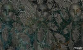Vanilla Lime wallpapers Murals 014349