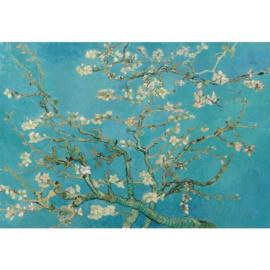 Fotobehang Vincent van Gogh Amandelbloesem in Turquoise