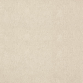 Dutch Wallcoverings Chroma 22-Sesame