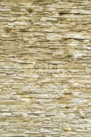 Esta Photowall XL 157705 Modern brick wall