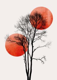 Fotowand Sun and Moon by Kubistika afm. 200cm x 280cm hoog