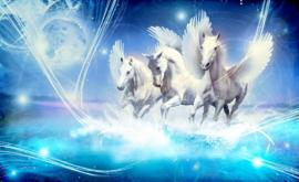 Fotobehang Gevleugelde Paarden Pegasus Blauw
