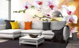 Fotobehang Witte orchideeën