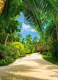 Fotobehang Idealdecor 00438 Tropical Pathway