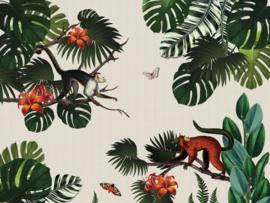 BN Studio Monkey Forest 200378