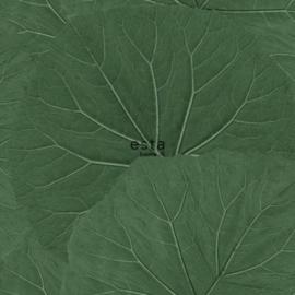 Esta Jungle Fever 151-138996 grote bladeren
