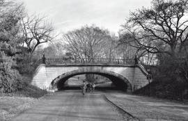 Dutch DigiWalls Due - art. 2055 Bow Bridge