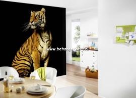 Fotobehang AP Digital 470038 Tiger