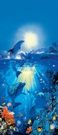 Fotobehang Idealdecor 00513 Dolphin in the Sun