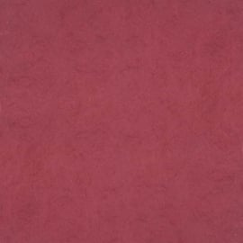 Dutch Wallcoverings Chroma 42-Cranberry