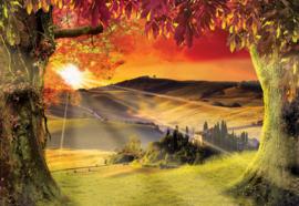 Fotobehang Toscaans landschap met zonsondergang