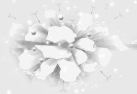 Fotobehang 3D Blast White And Grey