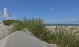 Fotobehang Holland 5598 - Duinen en zeepanorama