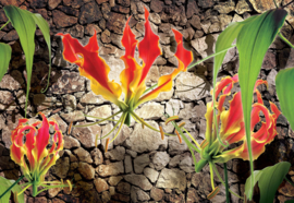 Fotobehang Floral Design