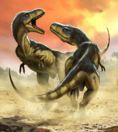 Komar Into Adventure IANGX5-006 National Geographic Albertosauruses Fight 250cm x 280cm hoog