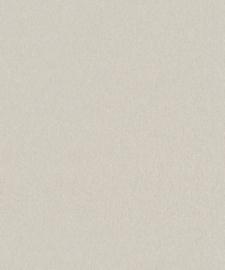BN Zen 218684 Canvas