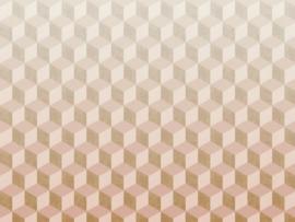 BN Cubiq 200420 Fading Cube Mural