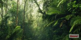 Komar Tropenwelten PSH098-VD5
