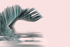 Fotowand Palm leaf water by Andrea Haase afm. 400cm x 270cm hoog