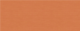 Texture Gallery BV30403 Pumpkin